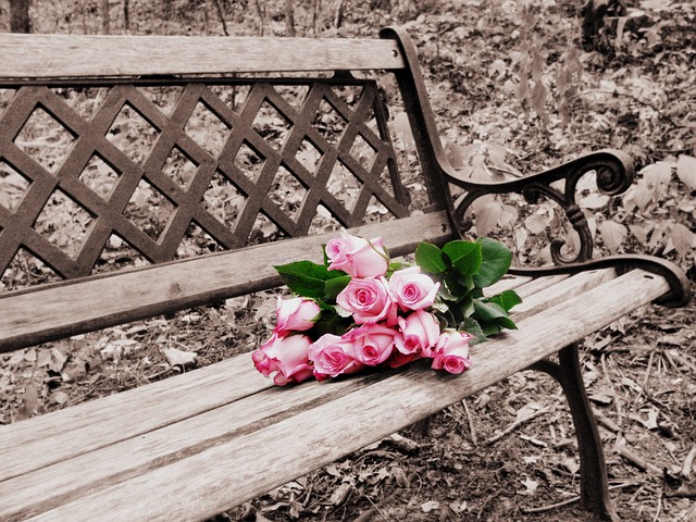 roses-on-bench-756950_640
