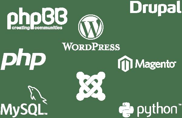 webhosting-linux-fave-hosting-app-illus-02-v01