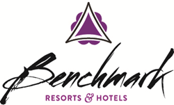 benchmark_color_logo
