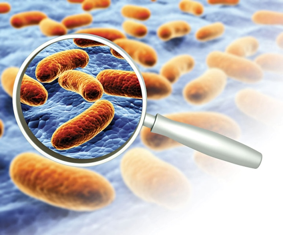 Screening For Superbugs In The Era Of Antimicrobial Resistance