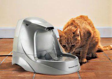 El uso de fuentes para gatos ayuda en las cistitis del gato
