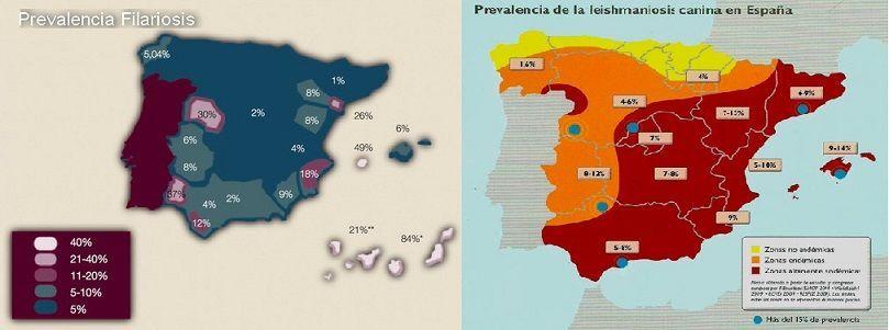 Mapa de prevalencia de las enfermedades por picadura de mosquito.