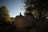 11-8-2014_Loki_Boyscouts_Lost_Valley_Camp_JPY6345