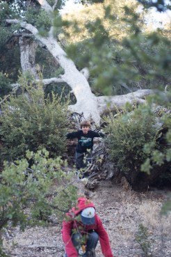 11-9-2014_Loki_Boyscouts_Lost_Valley_Camp_JPY6465