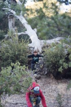 11-9-2014_Loki_Boyscouts_Lost_Valley_Camp_JPY6465