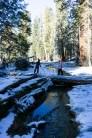 3-31-2016_The_Great_Spring_Break_Road_Trip_of_2016-Death_Valley-Sequoia-Yosemite__DSC2487