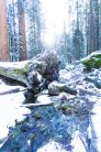 3-31-2016_The_Great_Spring_Break_Road_Trip_of_2016-Death_Valley-Sequoia-Yosemite__DSC2508