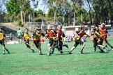 4-16-2016_Loki_Steelers_Game_4_DSC01602