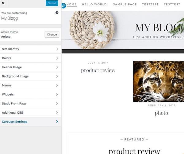 Customizing Theme Page