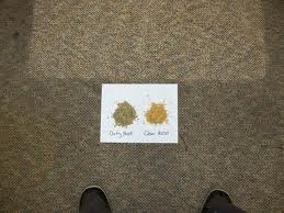 empresa de venta de máquinas para la limpieza de alfombras y moquetas