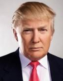 maar02-donald-trump-portrait