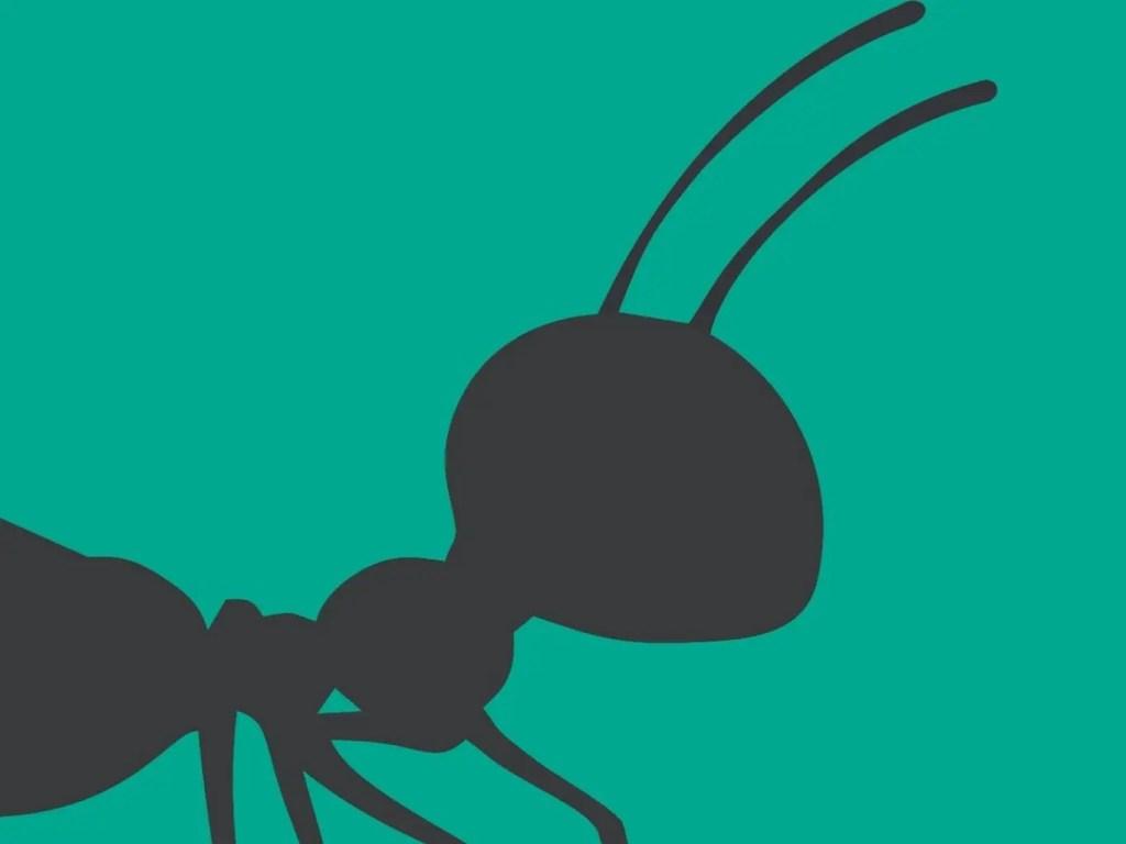 Hostel hormiganegra 52 | Hostel Hormiga Negra