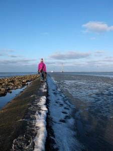 Nordsee-im-Winter (16)