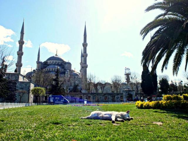tipps-istanbul-altstadt-outdoormaedchen