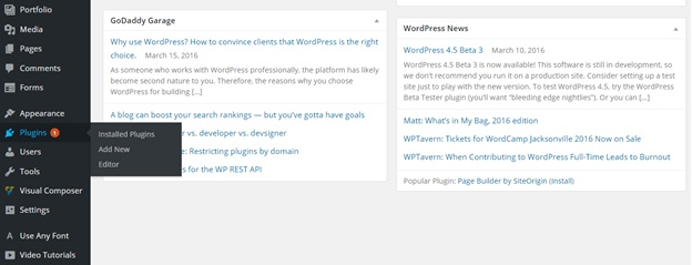 Installing or Updating Plugins in WordPress4