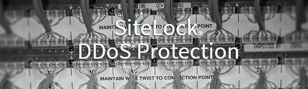 DDoS Protection