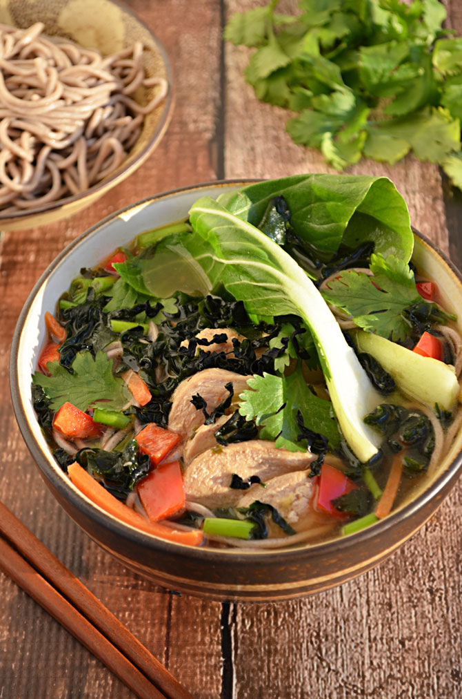 Japanese Chicken and Vegetable Soup