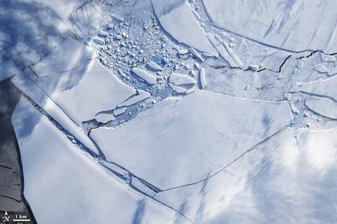 NASAWIlkins200904.jpg