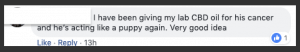 Another Facebook response about cbd for dogs