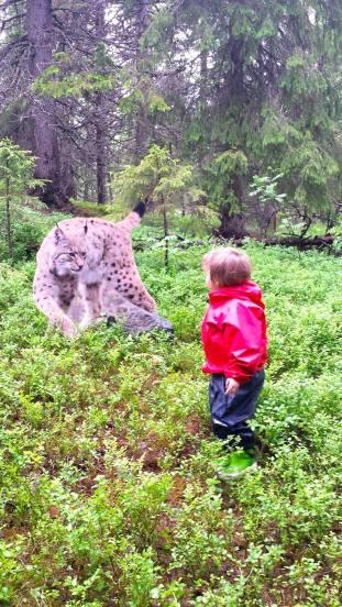 Spännande möte på vandring i Barnens naturstig. Foto Maritha Grelsson