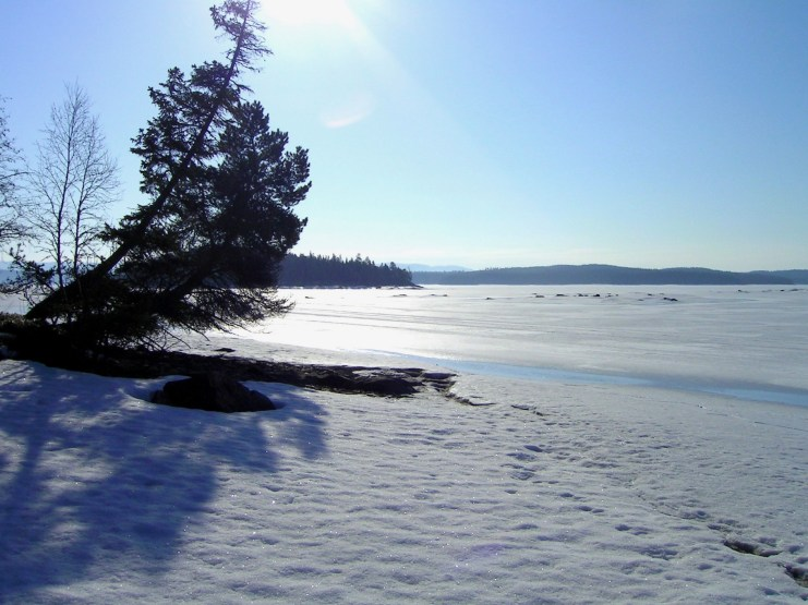 Hotagssjön i vinterskrud. Foto Maritha Grelsson