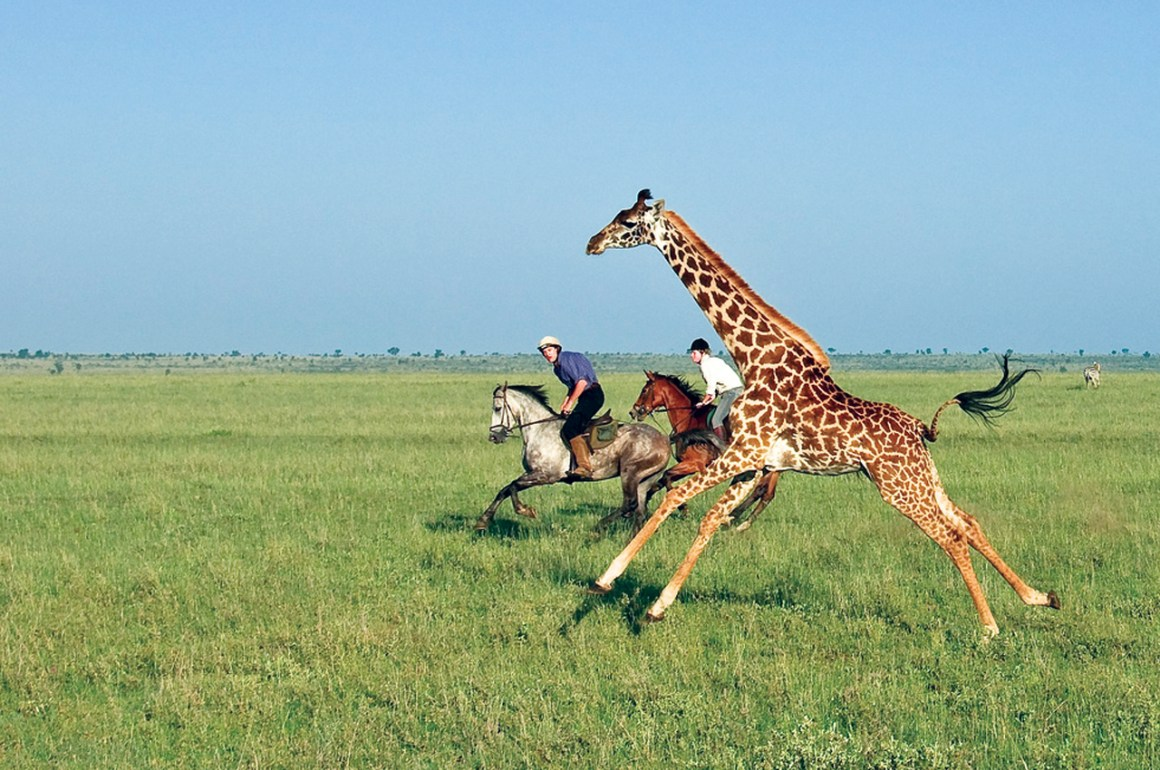 Ride Kenya - galeria1_portada_home