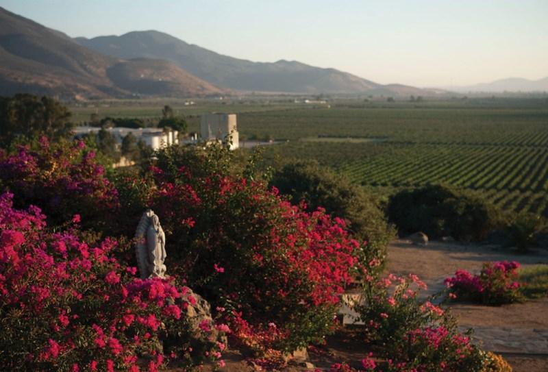 Catar vino en Baja California - baja2-1024x696