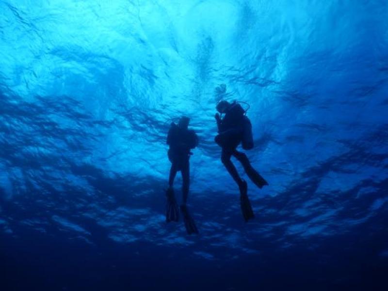 Tours de buceo en México - buceo-xtabay