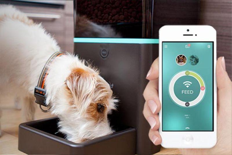 10 gadgets para disfrutar con tu perro  - pets.petnet_smartfeeder.10