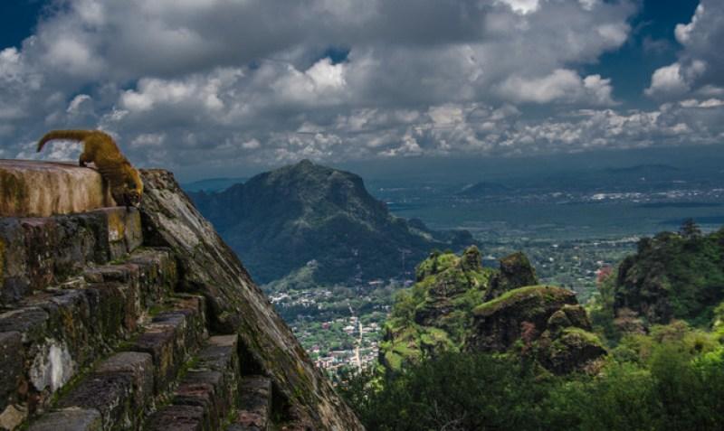 Back on track: Los mejores lugares para hacer ejercicio en México - w1siziisinvwbg9hzhmvcgxhy2vfaw1hz2vzl2y4ytzjndu2mgqyogy4zjiwm19frfndmdg2mc5qcgcixsxbinailcj0ahvtyiisingzota-il0swyjwiiwiy29udmvydcisii1xdwfsaxr5idkxic1hdxrvlw9yawvudcjdxq