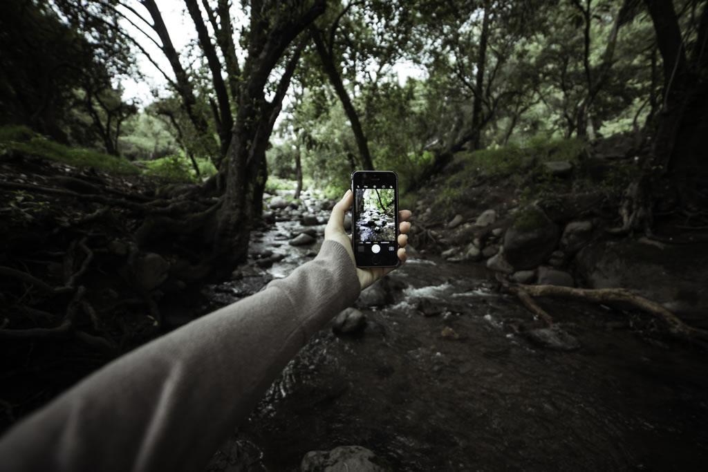 Un recorrido hacia la naturaleza viva de mi ciudad - recorrido naturaleza - D3