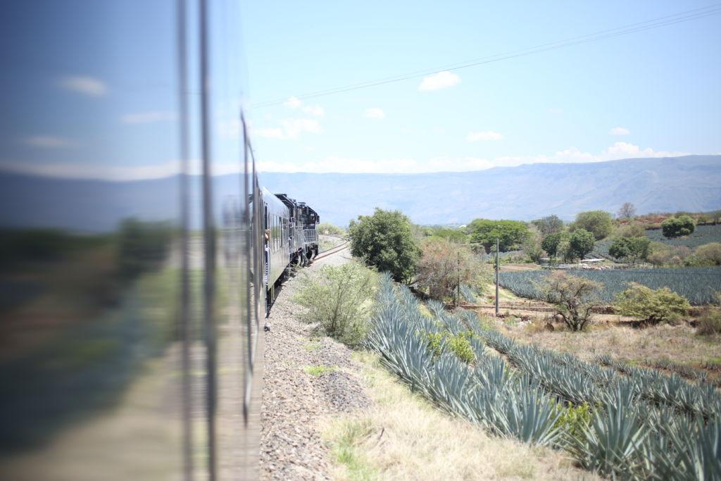 Viaje en el tren tequilero Herradura Express - tren herradura express 3 -portada