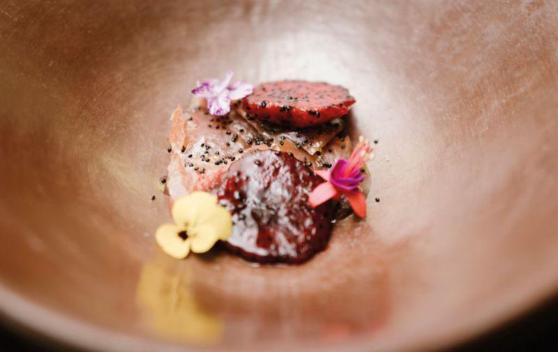 Mesa Viva Experiencias Gastronómicas y Culturales Inspiradas en México - MESAVIVA-2
