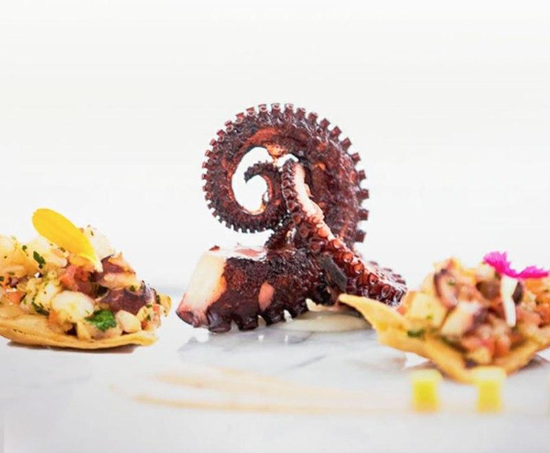 Los mejores restaurantes de comida española en la CDMX - guria