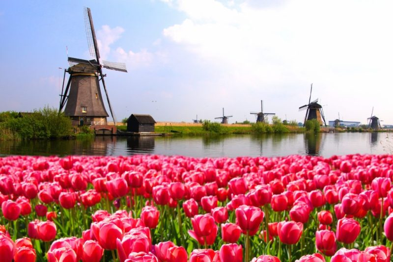 Guía para visitar Ámsterdam - 1-amsterdam-cuando-ir_