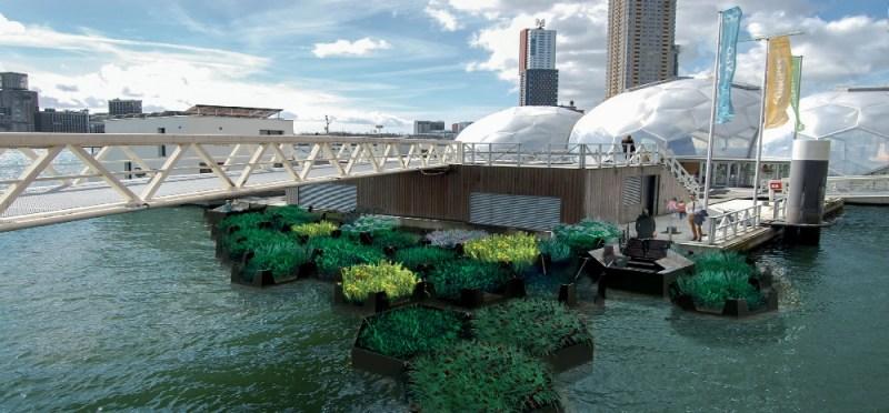 Rotterdam's Floating Park, el primer parque hecho de plástico reciclado - rotterdam-floating-park-1