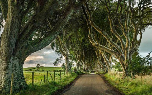Game of Thrones tendrá su propio parque temático - game-of-thrones-irlanda-del-norte