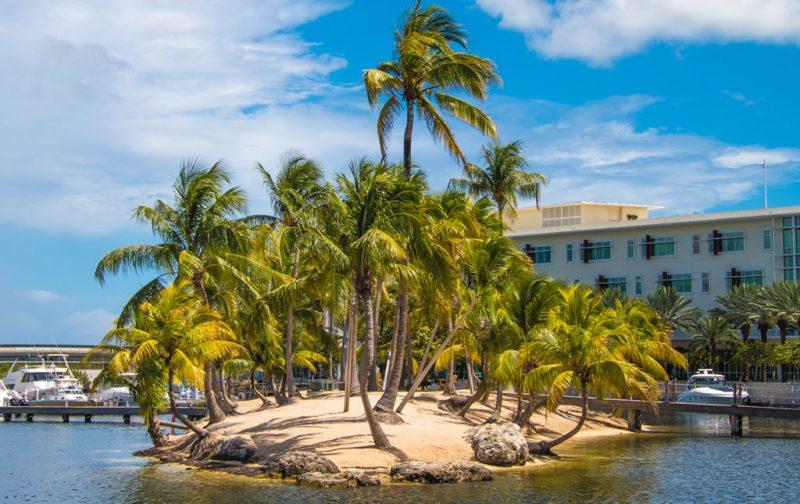 Las Islas Caimán, un archipiélago en el corazón del Caribe - hotel-playa-isla-palmeras-caiman