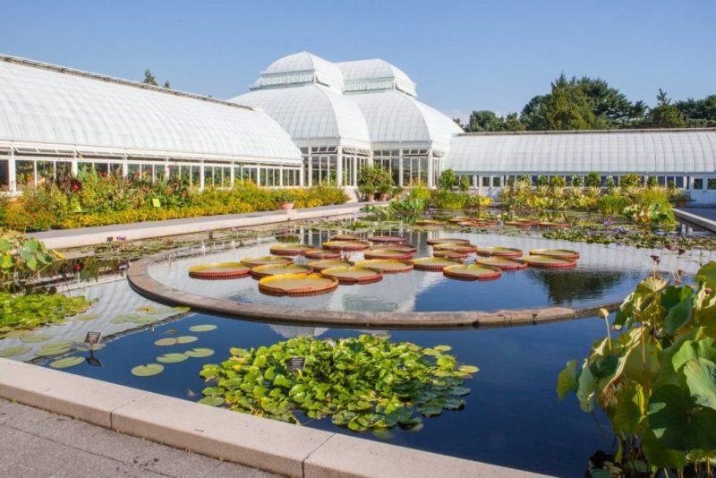 Los jardines botánicos más bonitos del mundo - new-york-botanical-garden