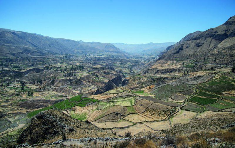 Arequipa y el Cañón del Colca - arequipa-7