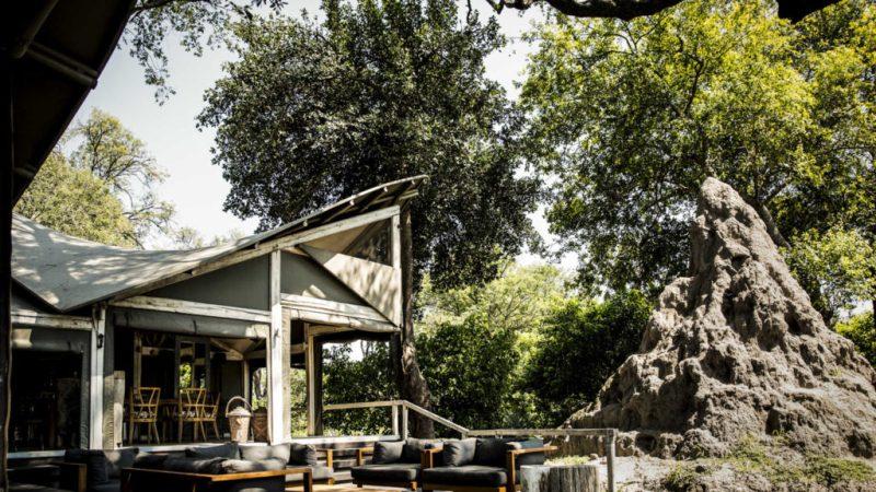 Abu Camp, el campamento ideal para los amantes de los elefantes - hotbook-abu-camp-el-campamento-ideal-para-los-amantes-de-los-elefantes-4
