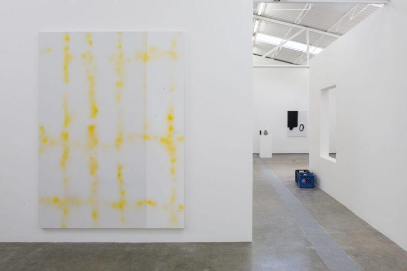 La segunda exposición de Julius Heinemann en la galería Proyectos Monclova - 18