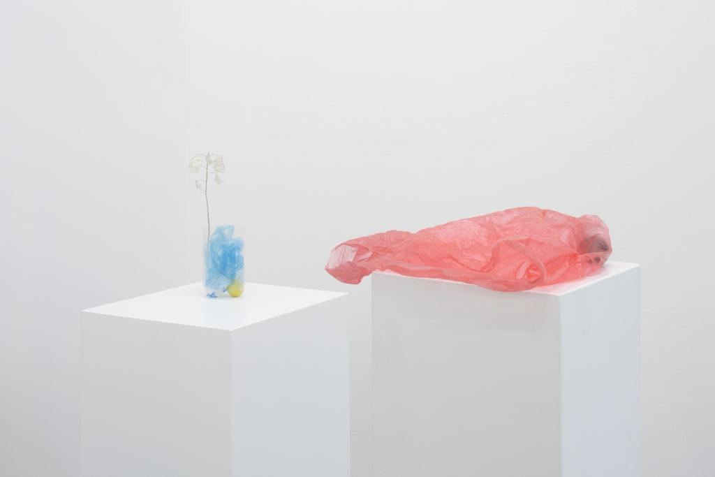 La segunda exposición de Julius Heinemann en la galería Proyectos Monclova - 22