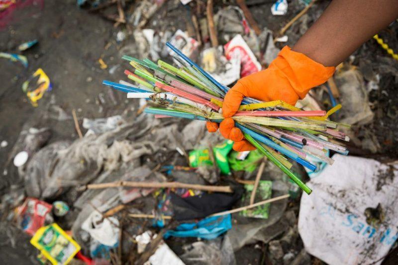 Contingencia ambiental: ¿qué debemos hacer para cuidar nuestro planeta? - 2-popotes