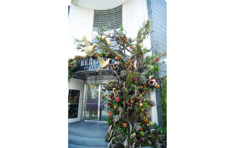 FYJA: Polanco en flores - berger-4
