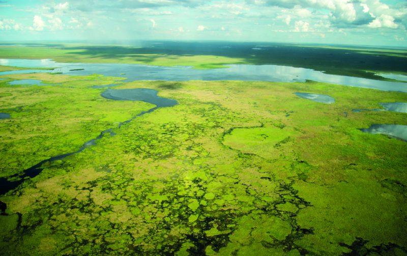 Esteros del Iberá, la nueva joya del conservacionismo - esteros-del-ibera-4