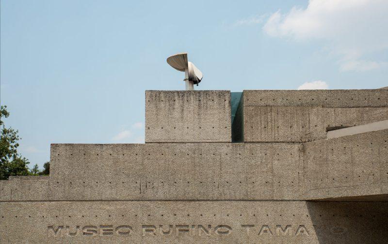 Sunday De Carsten H 246 Ller En El Museo Tamayo