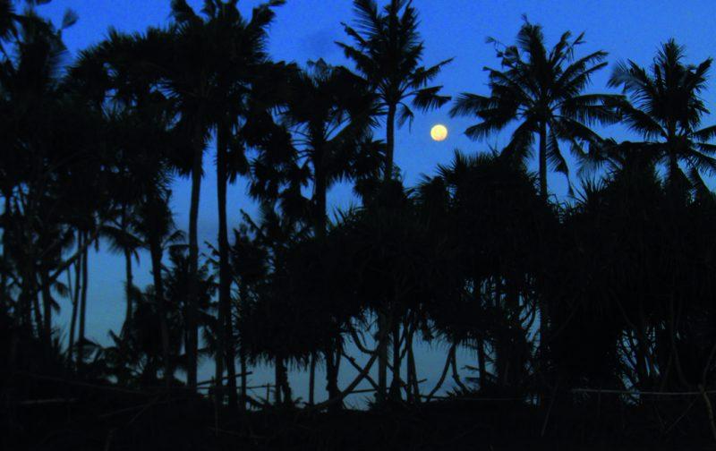 Bali, conocida también, y no por nada, como la isla de los dioses. - bali-4