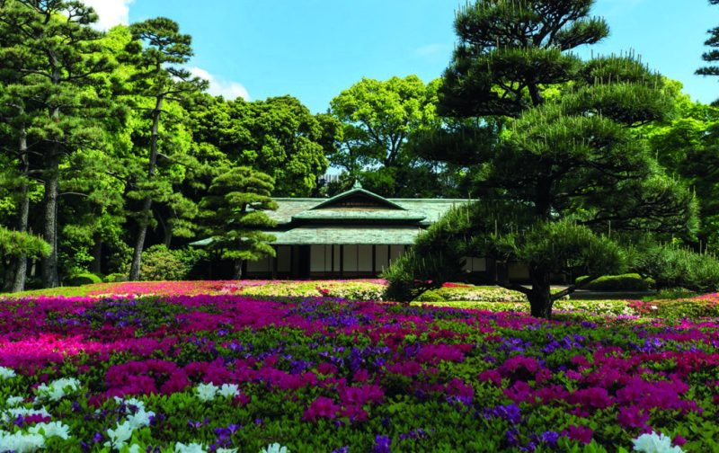 48 horas en Tokio - imperial-palace-gardens-1-foto-cortesia-de-japan-national-tourism-organization