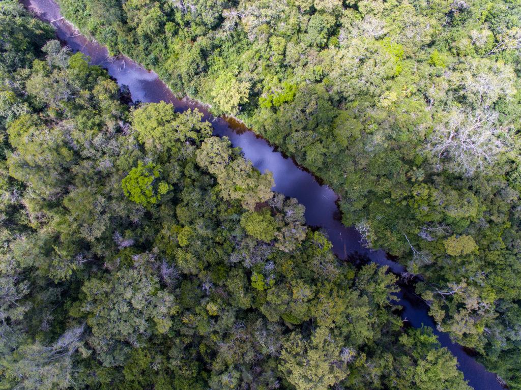 Airbnb y Rutopía: experiencias de turismo biosustentable - airbnb rutopia portada